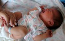 Золотистый стафилококк в кишечнике: норма или опасность?