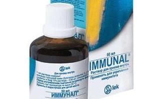 Иммунал для детей инструкция по применению препарата